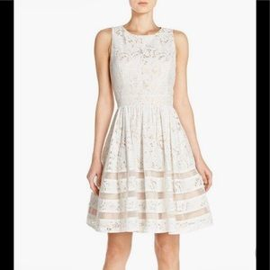 Eliza J Beautiful embroidered lace fit flare dress
